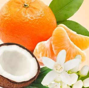 Best Coconut Fragrance Oils Mandarin Coconut Fragrance Oil