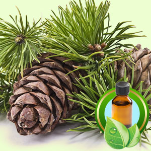 Top 25 Essential Oils Cedarwood Virginiana Essential Oil