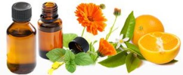 Top 25 Essential Oils