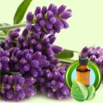 Best Essential Oil BlendsLucky Leprechaun Face Mask Recipe lavender
