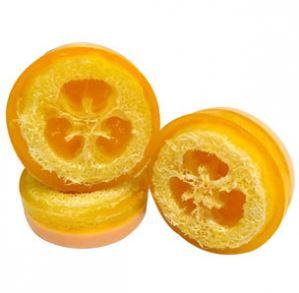 Soap Embed Ideas Mango Loofah Melt and Pour Soap Recipe