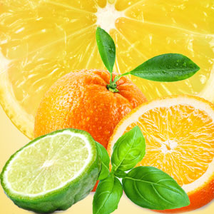 Strong Citrus Fragrance Oils NG Cool Citrus Basil Fragrance Oil