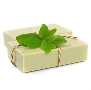 Shea Butter Soap Recipes Peppermint Cold Process Foot Soap Recipe