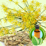 Best Essential Oil Blends Lucky Leprechaun Face Mask Recipe sweet fennel