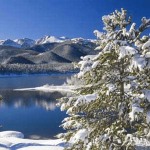 Popular Cinnamon Fragrance Oils Aspen Winter Fragrance Oil