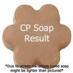 Popular Cinnamon Fragrance Oils Graham Crackers Fragrance Oil Soap