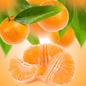 Strong Citrus Fragrance Oils Tangerine Dreams Fragrance Oil