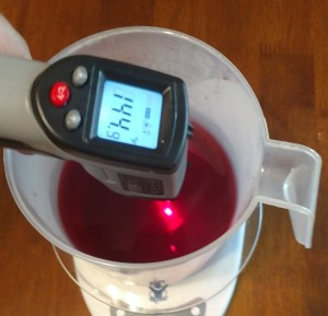 Homemade Hibiscus Conditioner Checking the Temperature