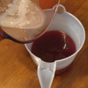 Homemade Hibiscus Conditioner Combine Your Two Mixtures
