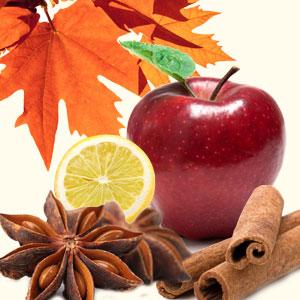 Fall Fragrance Oils Autumn Magic Fragrance Oil