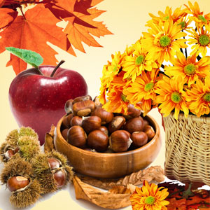 Fall Fragrance Oils Autumn Wreath Type Fragrance Oil