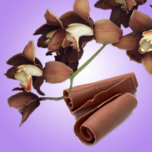 Chocolate Scent for Scented Crafts: Chocolate Orchid Fragrance Oil