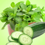 Adding the Remaining Cosmetic Ingredients: Cucumber Mint Fragrance Oil