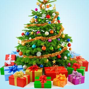 Fragrance Oils for Winter:Christmas Tree Fragrance Oil