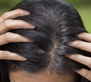Rice Bran Oil Benefits Anti-Aging Effects on the Hair