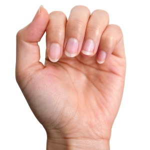 Jojoba Oil Benefits for Your Hands