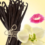 What Can I Use to Flavor Lip Balm: Vanilla Bean Flavoring