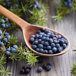 Juniper Berry Benefits: Other Benefits