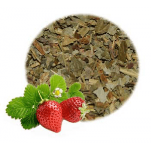 What are the Benefits of Strawberry Leaves?