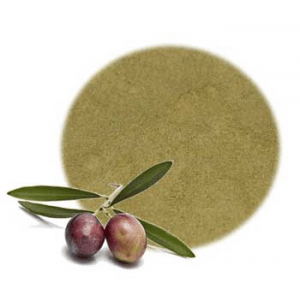 Olive Leaf Powder Benefits