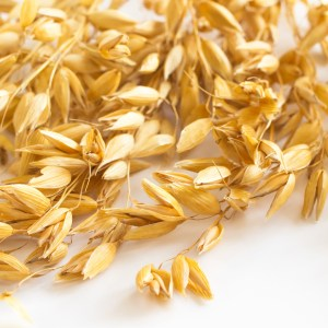 What is Oat Straw?: Other Uses