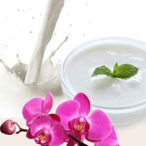 Natural Yogurt Multi-Base Lotion