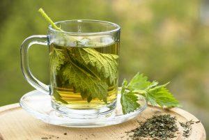 Nettle Bath Bomb Recipe: The Benefits of Nettle Leaf