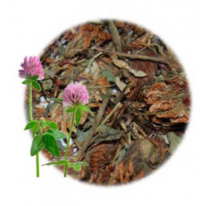 What is Red Clover Good For?