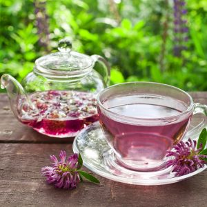What is Red Clover Good For?: Food and Beverages