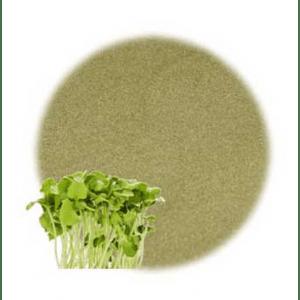 Moisturizing Herbs for Hair: Alfalfa Leaf Powdered Herb