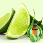 Key Lime Essential Oil