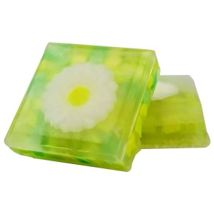 Dreama Melt and Pour Soap