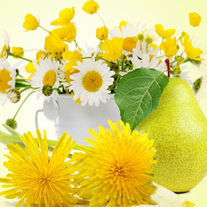 15 Fragrance Oils for St Pattys Day - Dandelion Pear Fragrance Oil