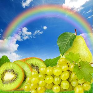 Rainbow Fragrance Oil