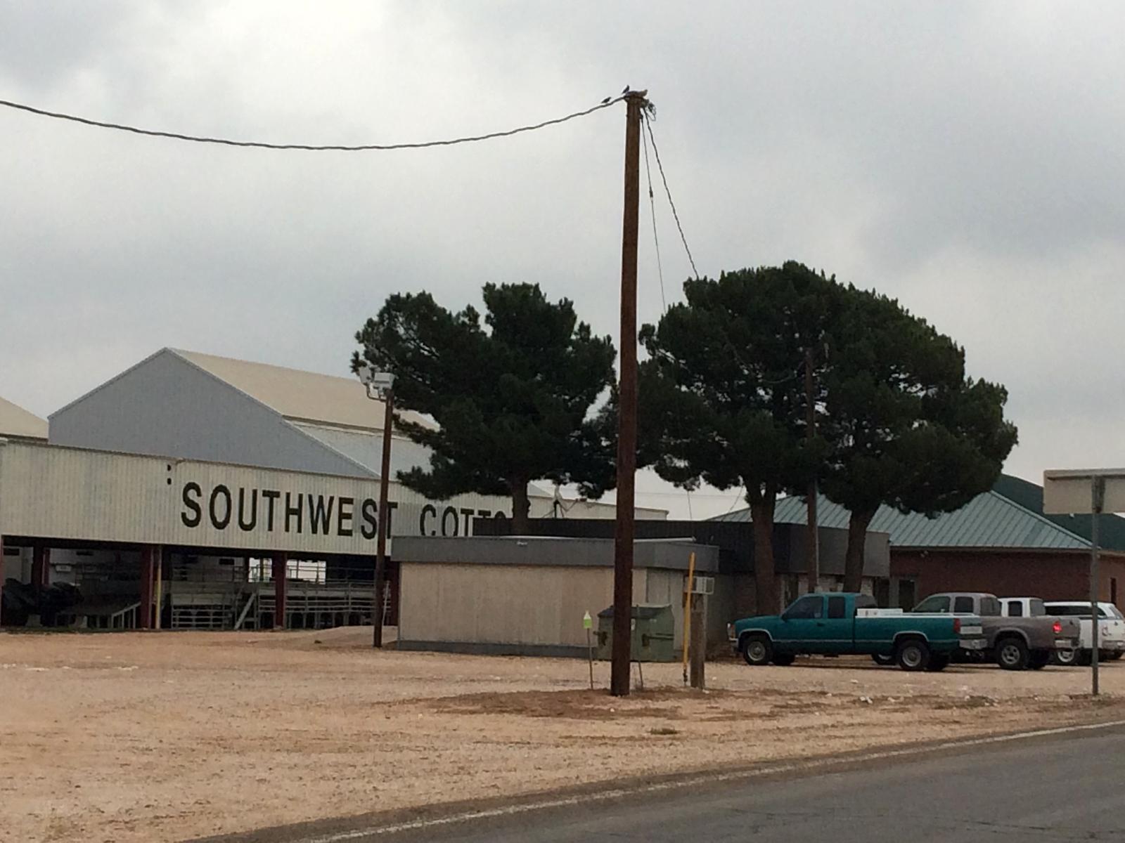 cotton gin, wellman texas