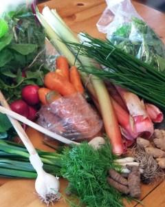 Fresh Market Ingredients!