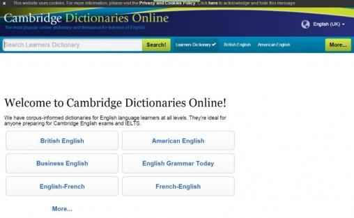 13 - Cambridge Dictionary online