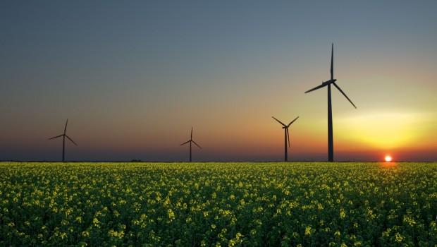 wind-farm-620x350