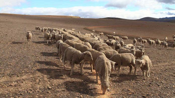 Vir die boere in Sutherland