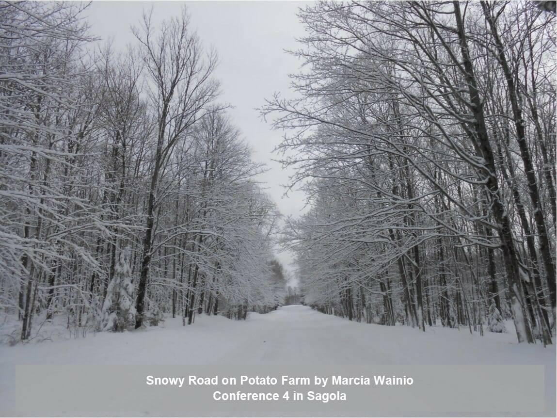 Snowy Road on Potato Farm by Marcia Wainio