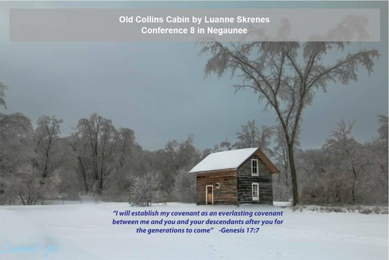 Old Collins Cabin by Luanne Skrenes