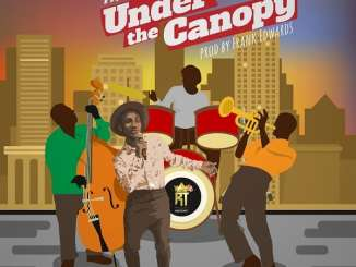 download mp3: frank edwards - under the canopy