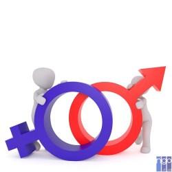 Житомирські медіа дослідили на рівень їх гендерної чутливості
