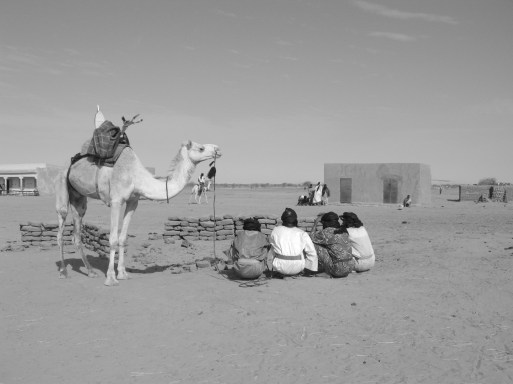 bw generic camel with guys