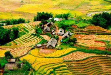Ruong Bac Thang - Gao Sach Viet Nam - Gian Hang San Pham Tot -- 26