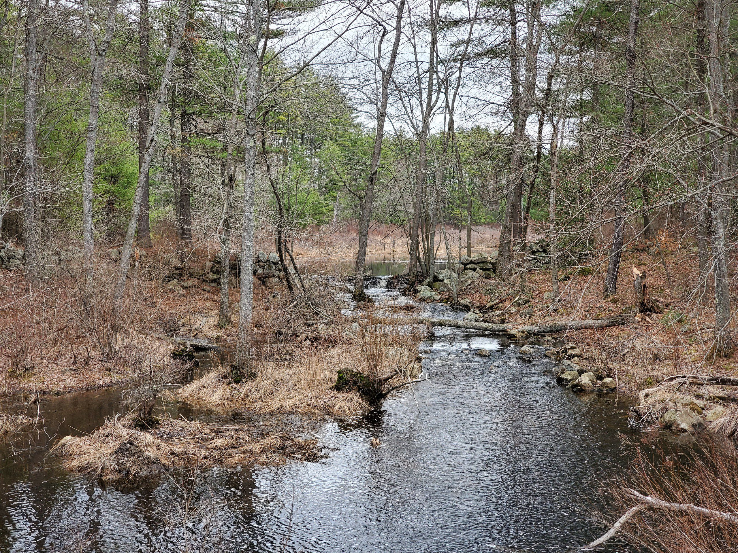 Clay Pond - Hooksett NH 1