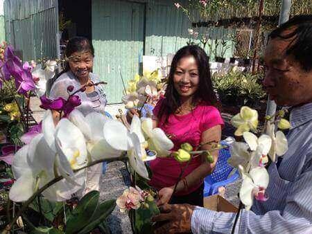 Kỹ thuật trồng hoa Lan theo công nghệ cao