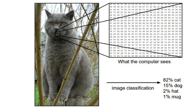 """Cách máy tính """"nhìn"""" một hình. - Nguồn: http://cs231n.github.io/classification/"""