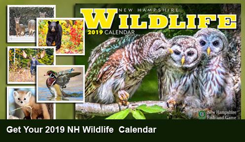 calendar-slide