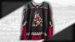 Image result for coyotes kachina jersey